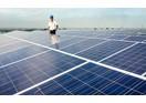 Tập đoàn Cá Tầm chi 1.200 tỷ đồng đầu tư nhà máy điện mặt trời