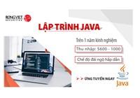 Lập Trình Viên (Java Developer)