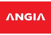 Tập đoàn Angia Group Chuyên Viên Phân Tích Đầu Tư BĐS